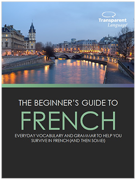 The Beginner's Guide to French