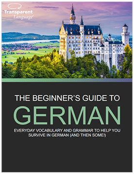 The Beginner's Guide to German