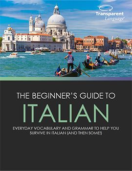 The Beginner's Guide to Italian