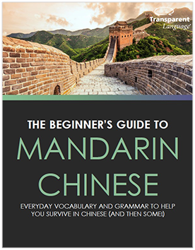 The Beginner's guide to Mandarin Chinese